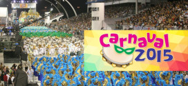 SOS NO CARNAVAL DE SP 2015